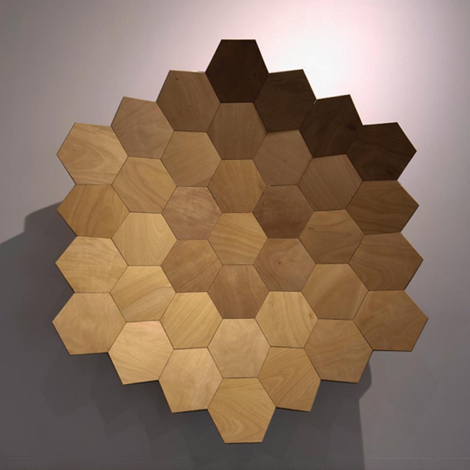 """""""Aeonium Lignum"""", madera, 245x235x60 cm. Carlos Nicanor, 2015"""
