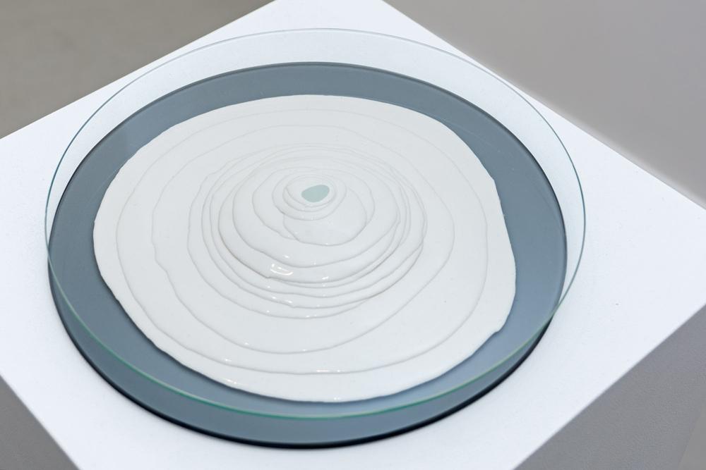"""Proteus"", cristal y silicona, 28 cm de diámetro x 5 cm. Salim Malla, 2015"