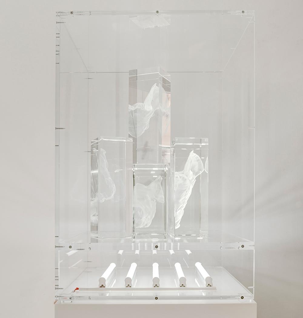 """""""Blackout, Pig head"""", cristal óptico grabado con láser en 3D, tubos LED y vitrina de metacrilato, 50x50x60 cm. Manuel Franquelo-Giner, 2017"""