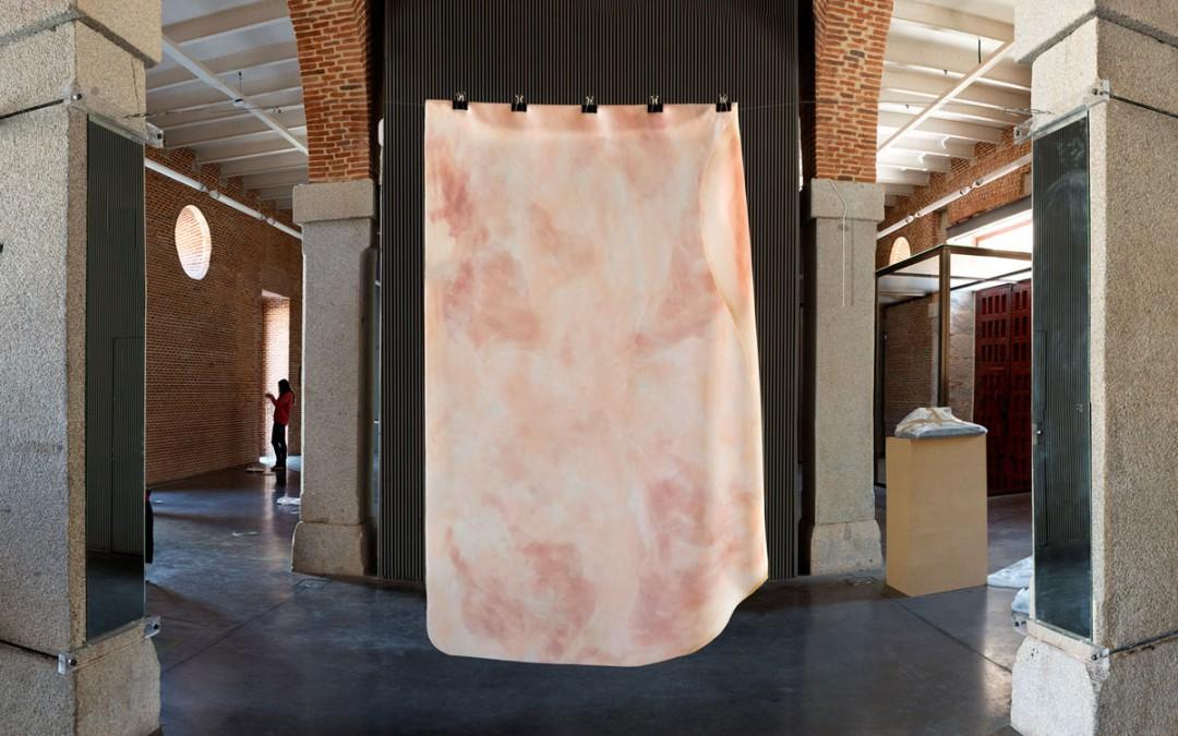"""""""Perdiendo el significado"""", instalación: espejos, cable de acero y capas de silicona teñida. Medidas variables, Manuel Franquelo Giner, 2015"""