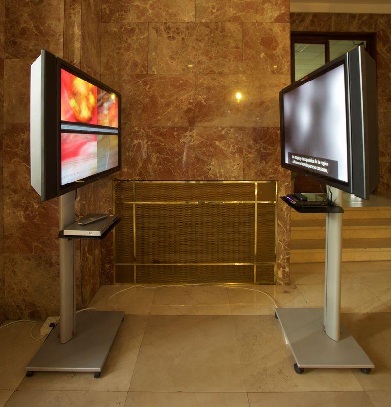 """""""Los celebrantes"""", videoinstalación con dos pantallas, Color / Sonido - B/N, sin sonido, 4'18'' / 9'01''. Marla Jacarilla, 2012"""