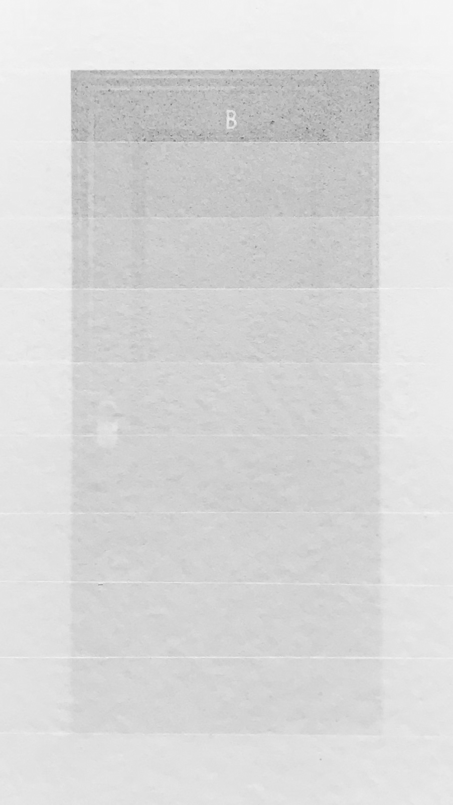escala-de-grises-puerta_titoperezmora